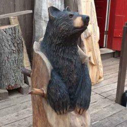 Fraboni bear cub